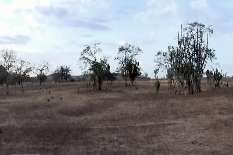 Intensidade da seca na Bahia tem leve aumento, aponta monitor da Agência Nacional de Águas
