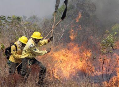Ibama determina recolhimento de brigadas de combate a incêndios por falta de recursos