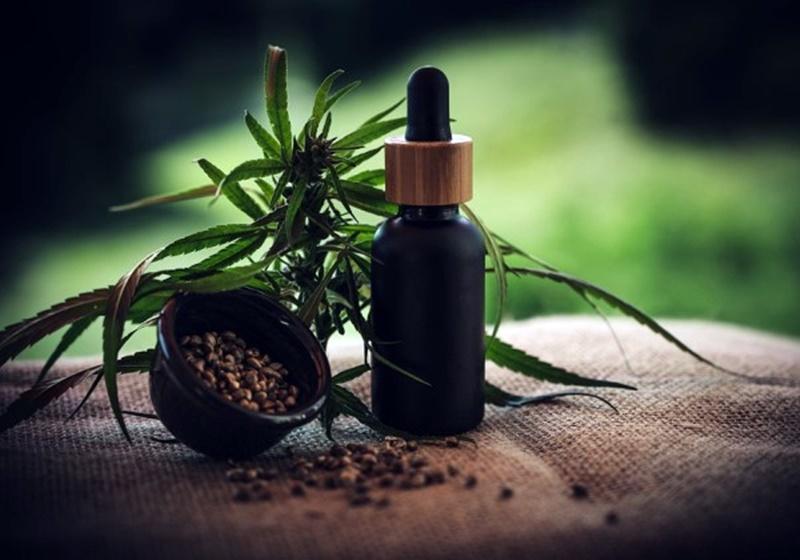 Comissão especial da Câmara aprova texto para uso medicinal da Cannabis