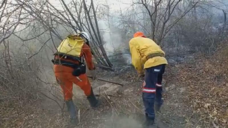 Nove cidades sofrem com focos de incêndio na Bahia