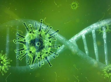 Ministério da Saúde fará estudo em 274 cidades para verificar taxa de infecção da Covid