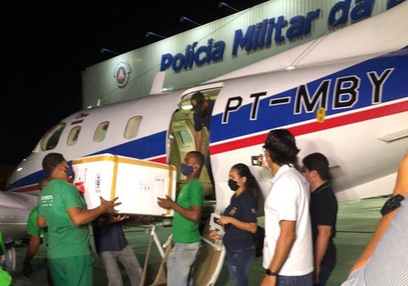 Anac instaura processo para apurar batida de avião com vacinas em jumentos na Bahia